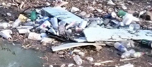 cullen park rubbish