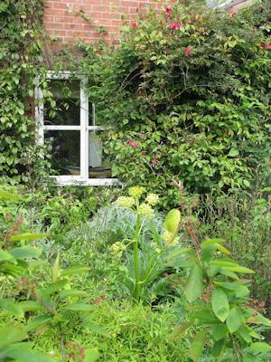 Front_garden_(9009725270)