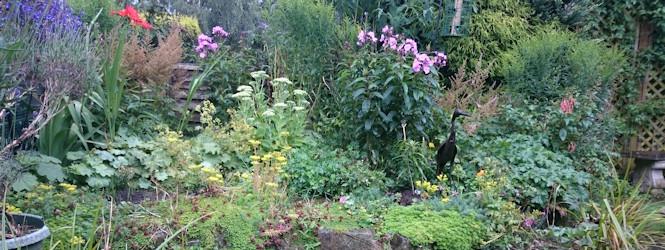 garden_2