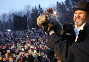 punxsutawney-phil-in-2008