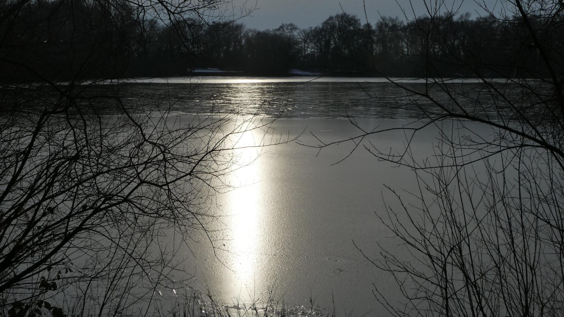 ice on shakerley mere