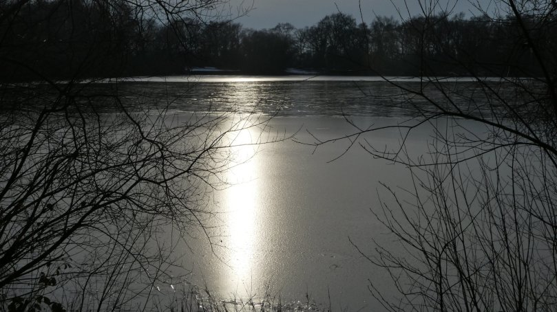 ice on shakerley mere