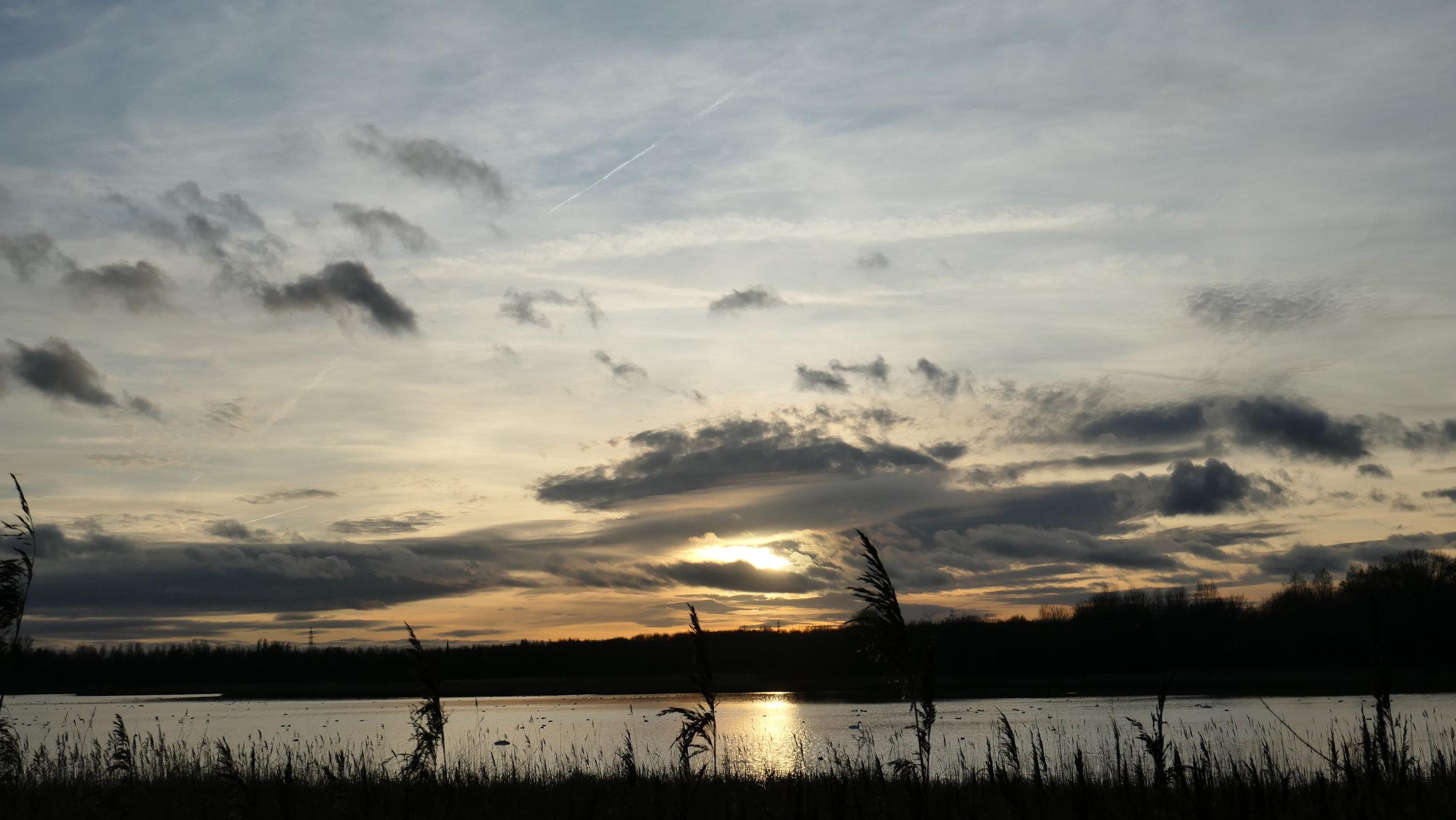 neumans sunset